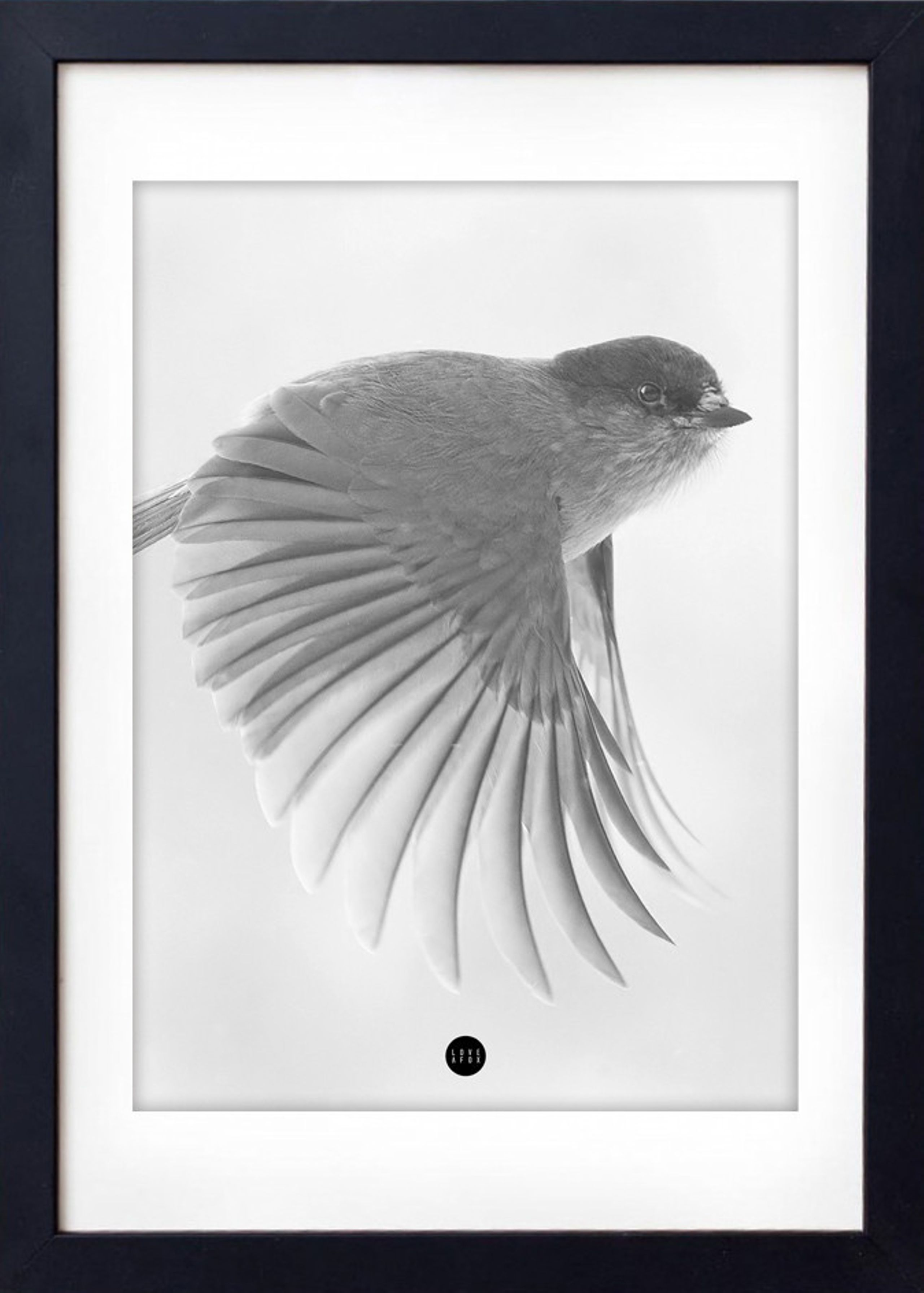 Image of   Grey Birdie Limited Edition