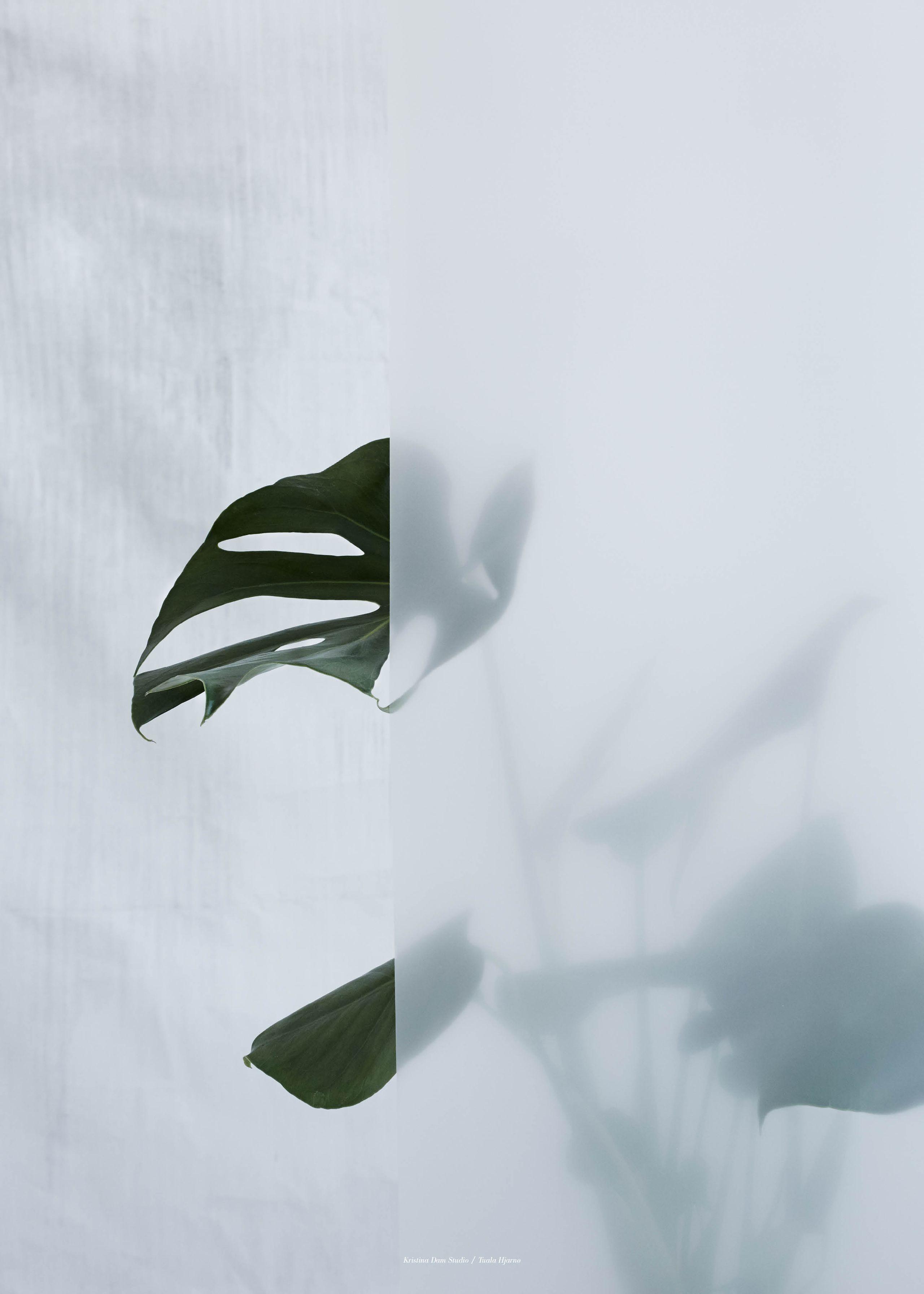 Image of   Split-Leaf I