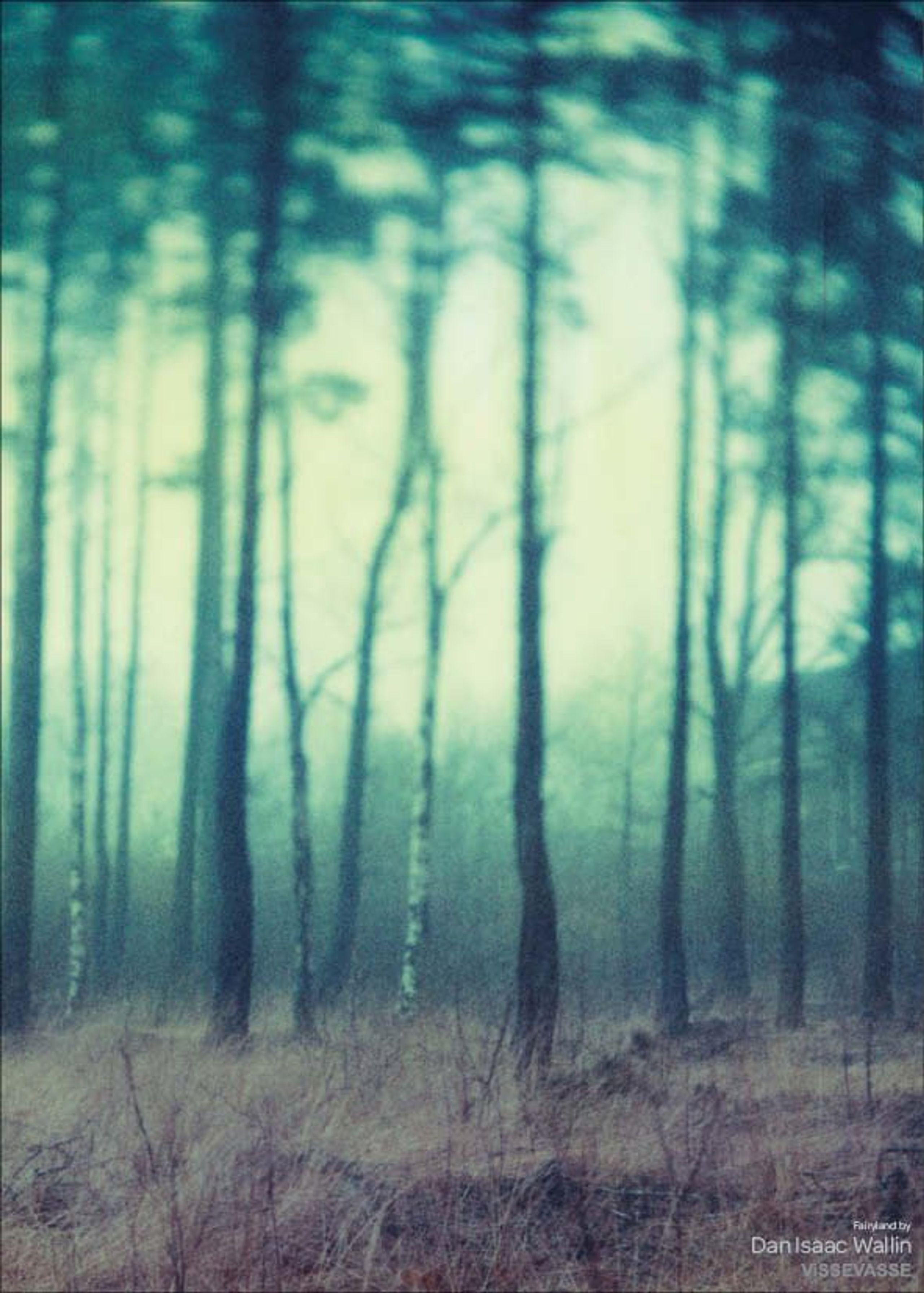 Image of   Dan Isaac Wallin - Fairyland