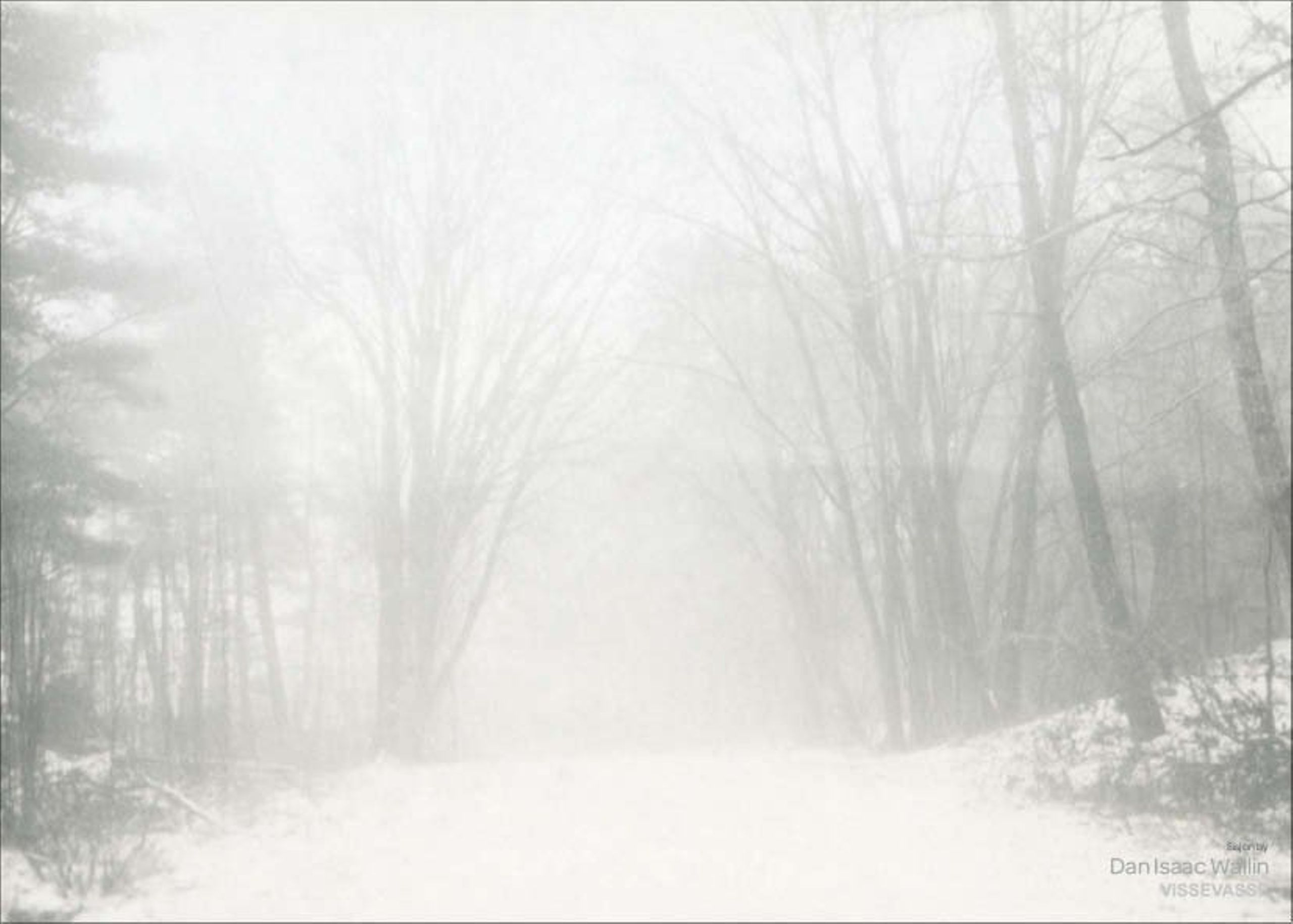 Image of   Dan Isaac Wallin - Peregrination