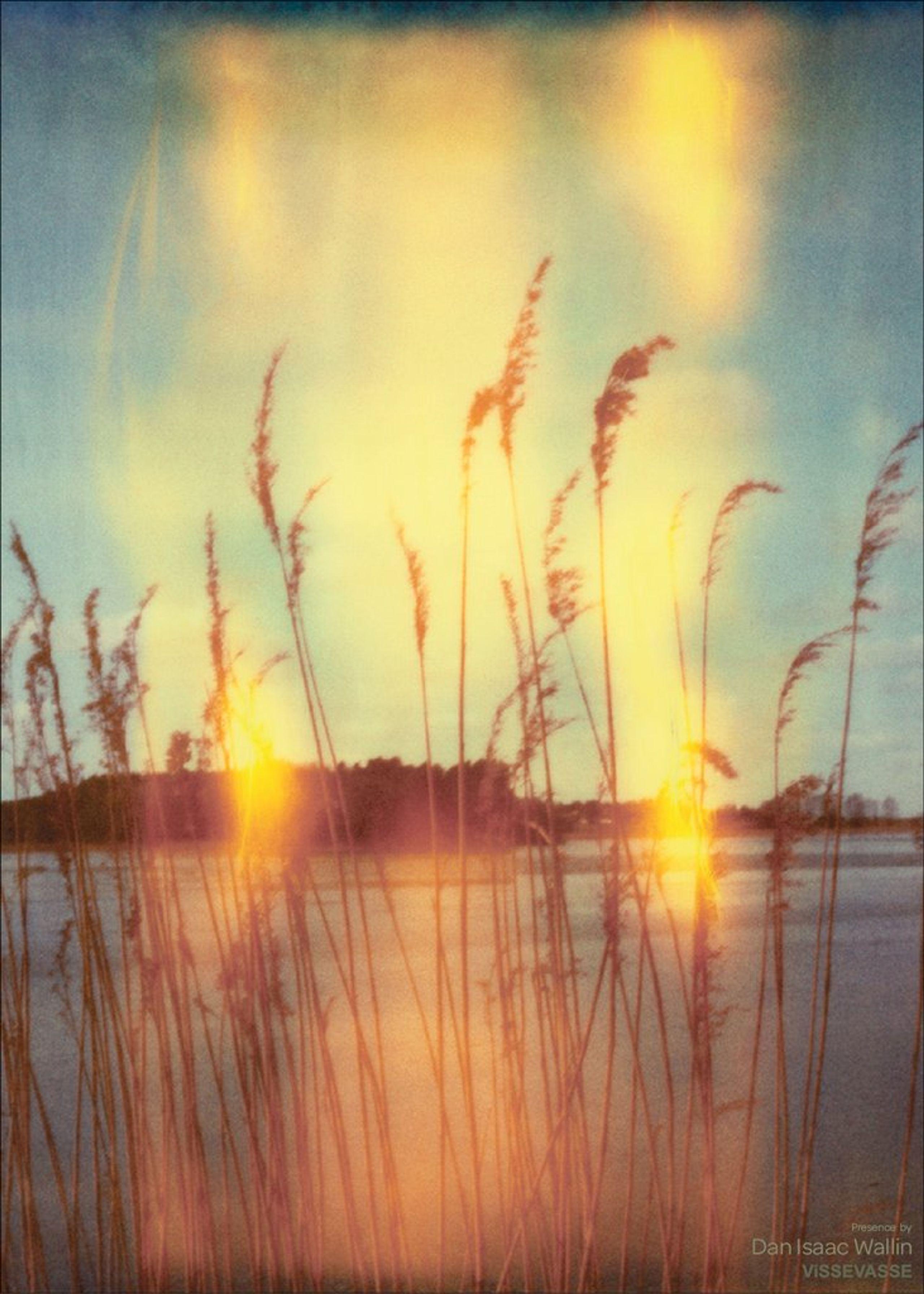 Image of   Dan Isaac Wallin - Presence