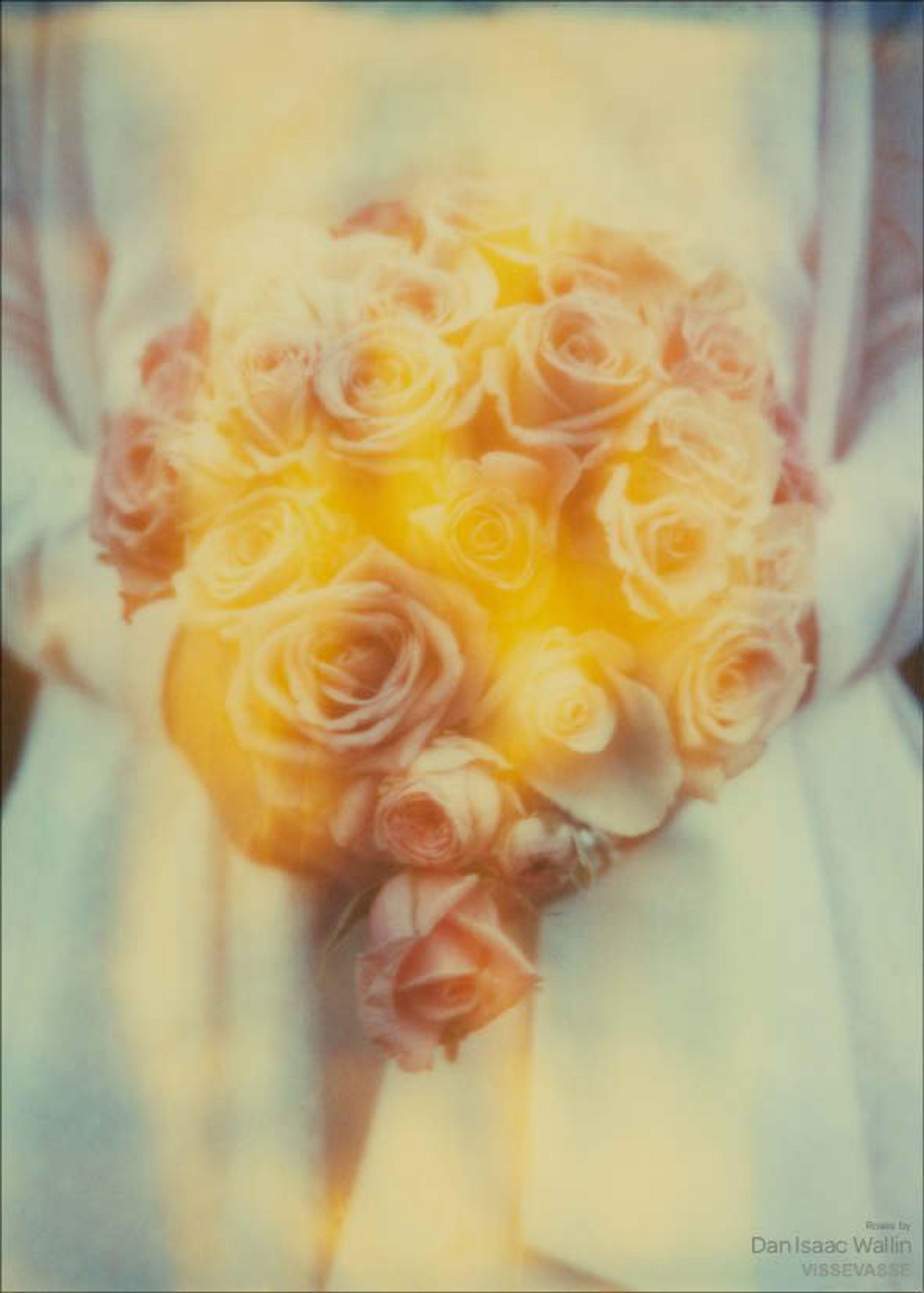Image of   Dan Isaac Wallin - Roses