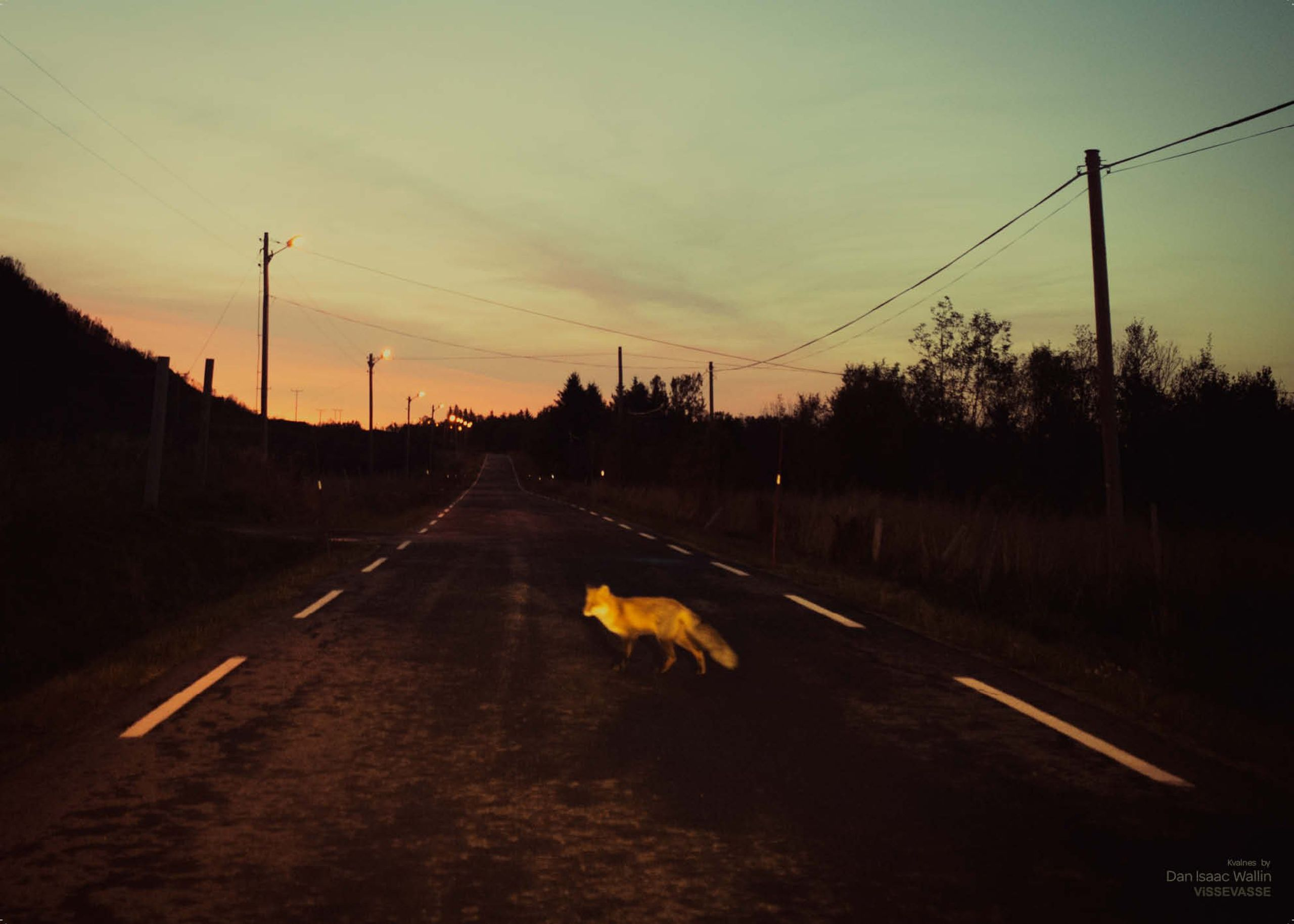 Image of   Kvalnes - Dan Isaac Wallin