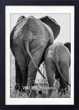 LOVE A FOX - Poster - Baby Elephant Grey - Grey