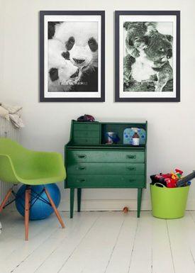 LOVE A FOX - Poster - Baby Koala Colour - Grøn Nuancer