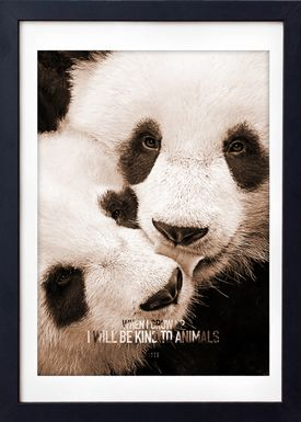 LOVE A FOX - Poster - Baby Panda Colour - Orange Shades