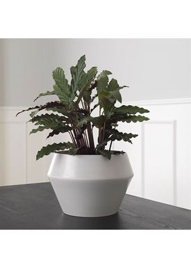 By Lassen - Urtepotte - Rimm Flowerpot - Cool Grey Large