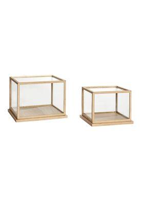 Hübsch - Kasser - Glass Display Box - Low - Oak