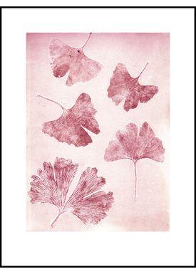 Pernille Folcarelli - Poster - Paper Prints Nature - ginkgo sorbet print