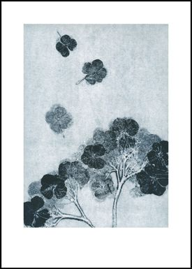 Pernille Folcarelli - Poster - Paper Prints Nature - hortensia ink print