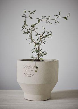 Skagerak - Jar - Edge Pot - Sierra Yellow / Ø13xH13 / Indoor