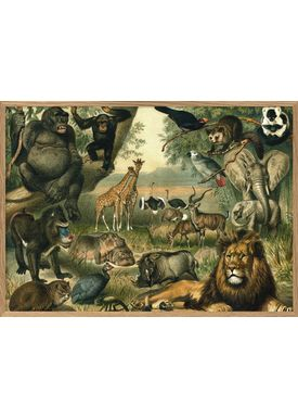 The Dybdahl Co - Poster - African Fauna. Horizontal  #2910H - Fauna