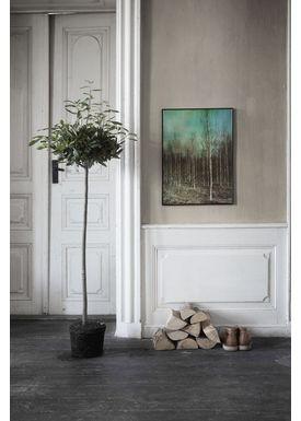 ViSSEVASSE - Poster - Dan Isaac Wallin - Birches - Birches