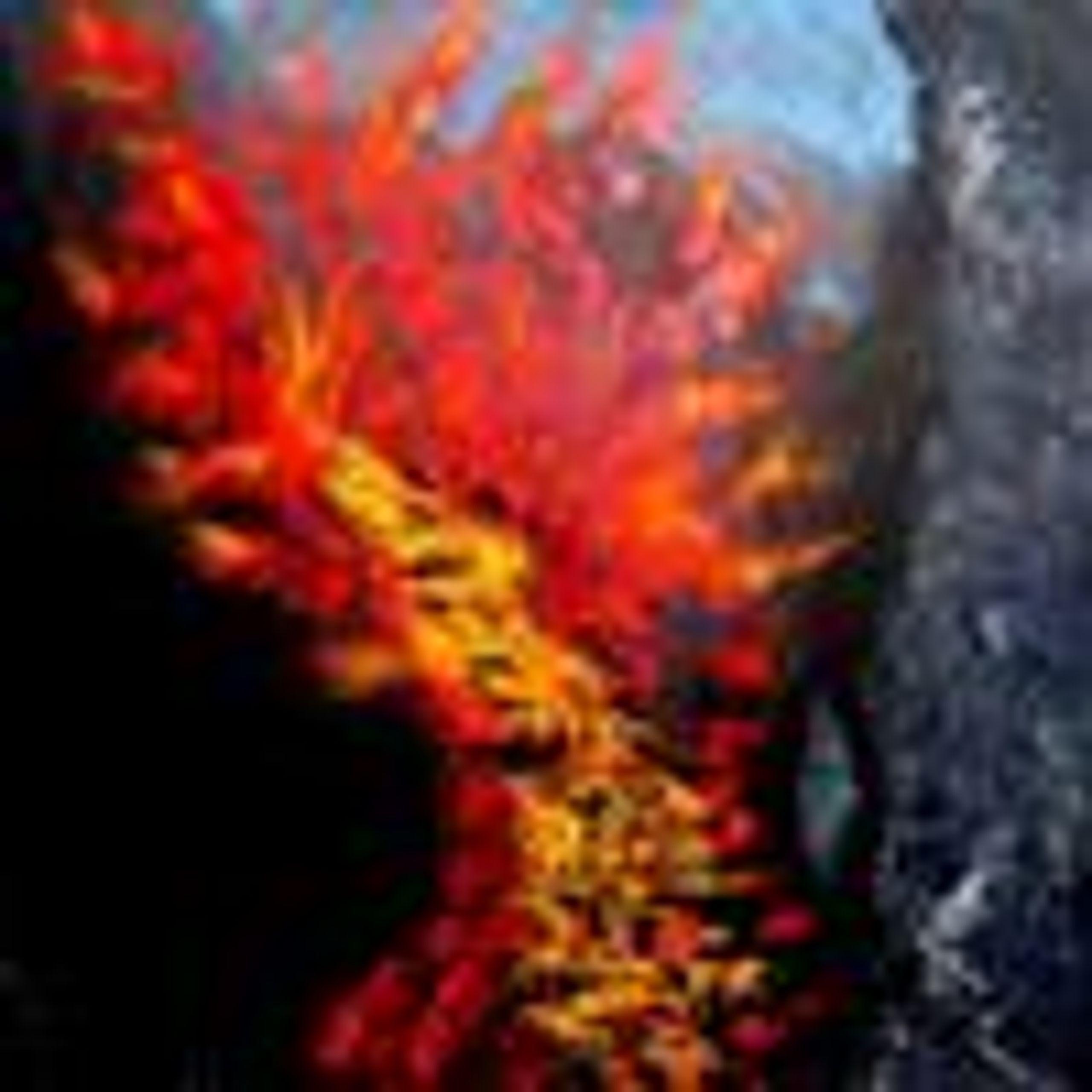 Vulcanic eruptions