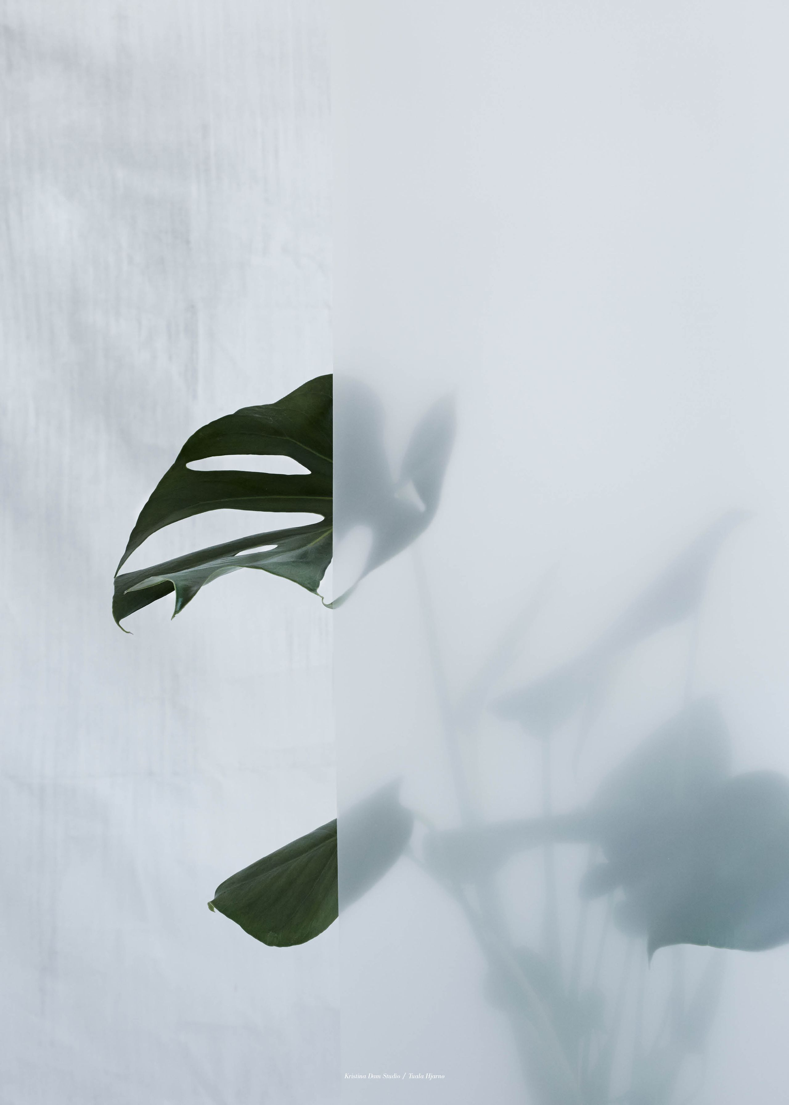 Split-leaf i
