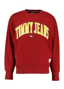 tommy-jeans-tjm-collegiate-sweat-ice-grey-ht-7547088.jpeg